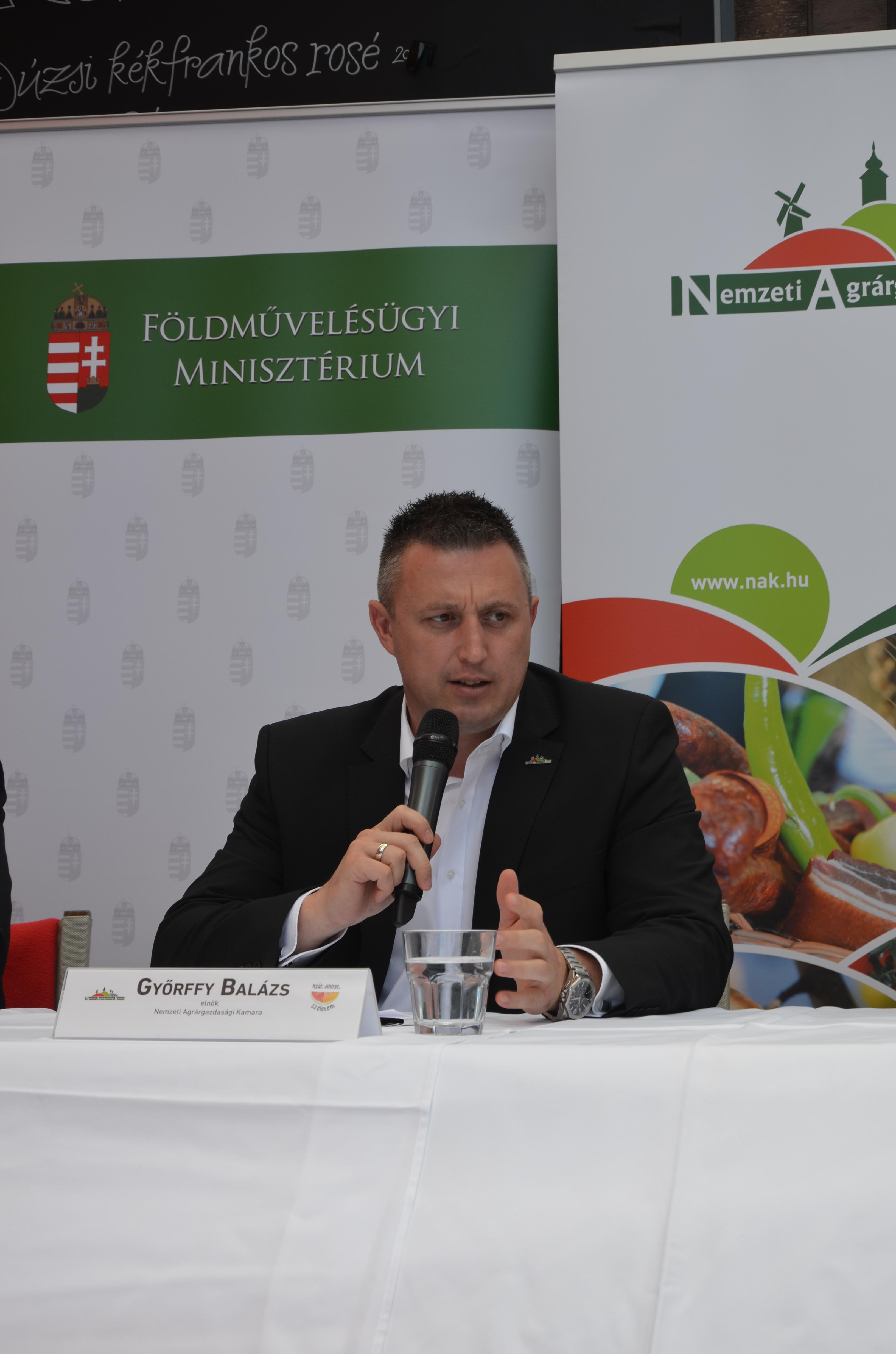Magyar dinnye promóció - sajtótájékoztató18