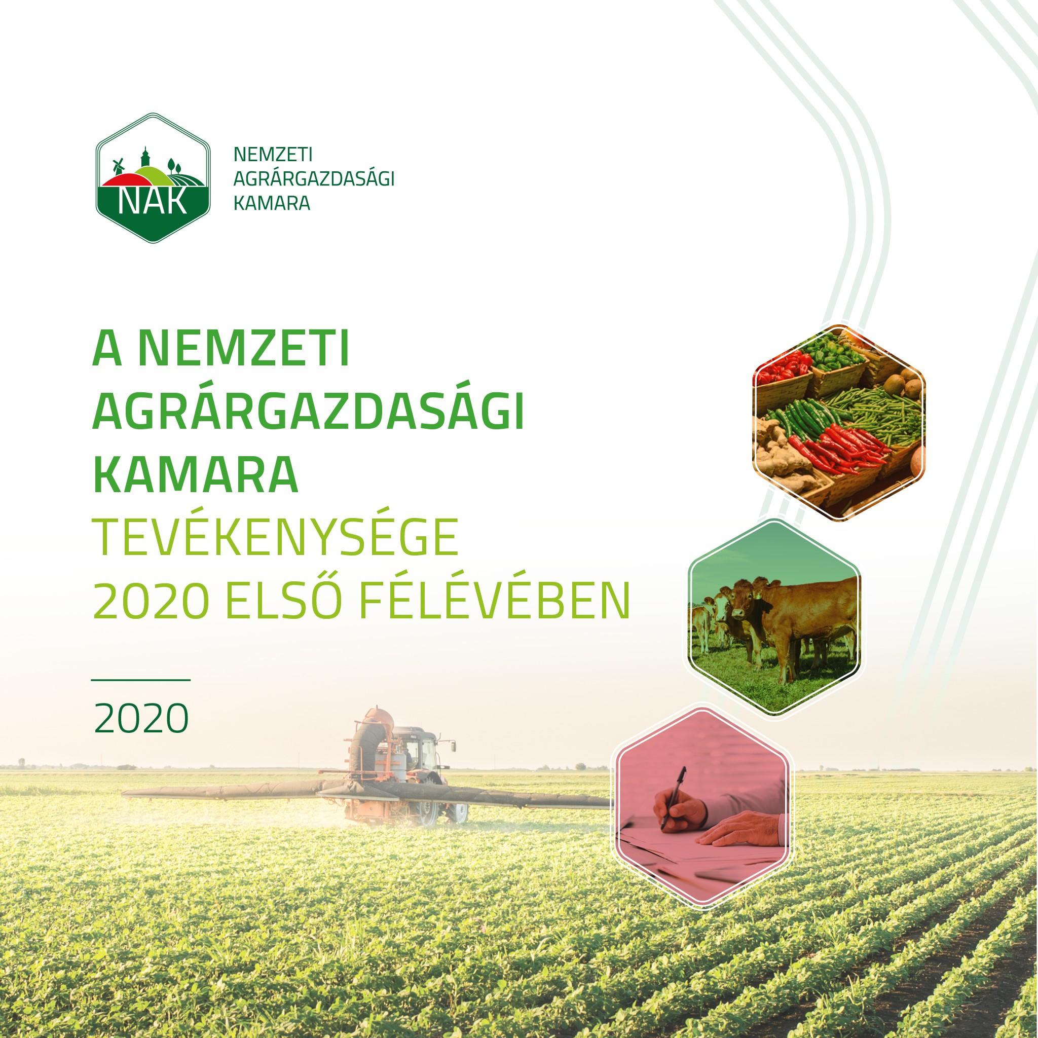 A NAK 2020 első féléves tevékenysége